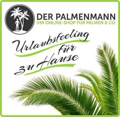 der palmenmann urlaubsfeeling f r zu hause radio paloma 100 deutscher schlager. Black Bedroom Furniture Sets. Home Design Ideas